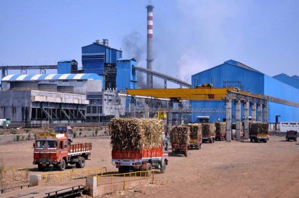 sugar-biomass